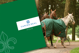 Camino Real has paid particular attention to the polo infrastructure and horse facilities.