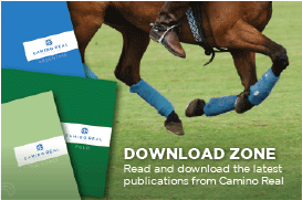 download zone, read and download the latest publications from camino real