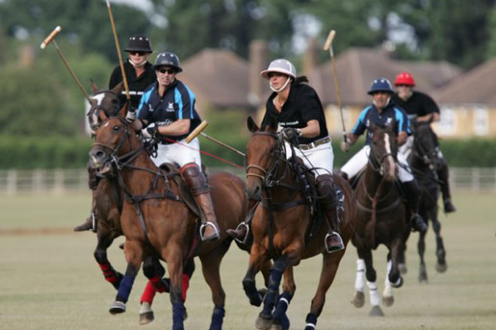 mint polo in the park event
