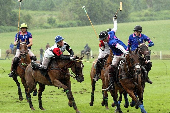veuvet gold cup 2012 cowdray park finals winners