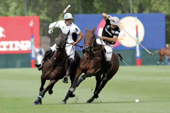 Argentina's love affair with polo - BBC News