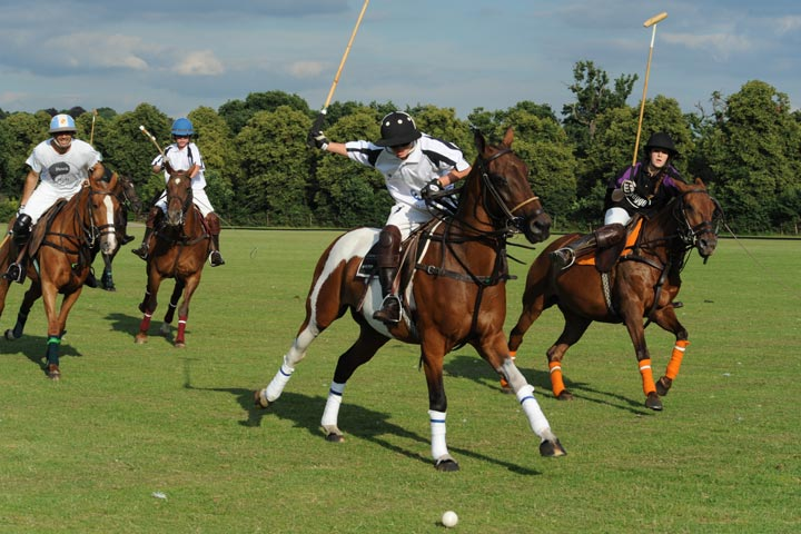 Experience Polo At Camino Real We Are Currently Building